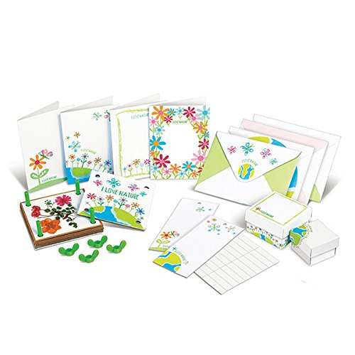 51d2Pc dMZL - 4M Green Creativity Pressed Flower Art Kit - Arts & Crafts DIY Recycle Floral Press Gift for Kids & Teens, Girls & Boys