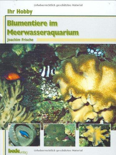 Blumentiere im Meerwasseraquarium, Ihr Hobby