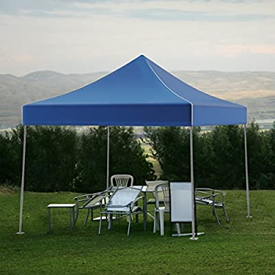 Canopy Tent Outdoor Party Shade, Instant Set Up and Easy Storage / Portable Carry Bag, Water Resistant Spacious Summer Cover 10x10 By Stalwart (Blue) : Garden & Outdoor