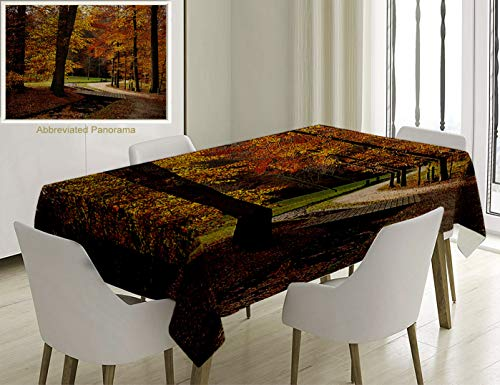 - Unique Custom Cotton and Linen Blend Tablecloth Autumn Rainy Gloomy Day Forest Path with Leafless Trees Art Photograph Marigold Amber and Seal BrownTablecovers for Rectangle Tables, 60 x 40 inches
