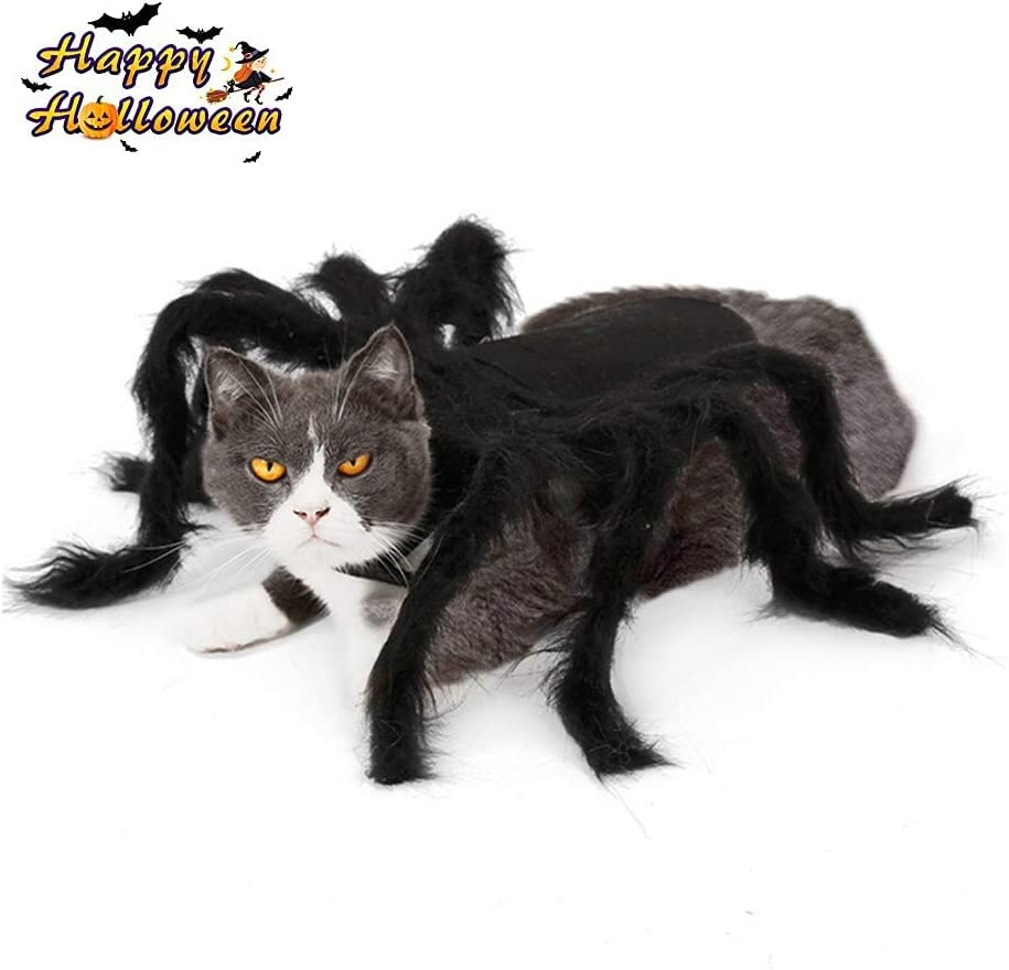 Xiaoyatou LMYKH Traje de Perro araña Halloween Spider Cosplay Disfraz de Mascota para Gato Perro Spider Role Play Vestir Ropa para Fiesta Navidad (S)