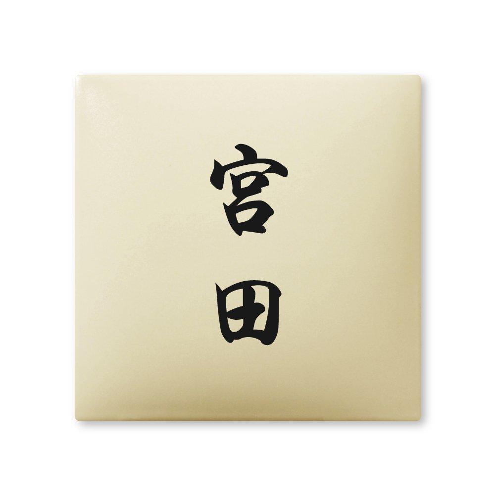 丸三タカギ 彫り込み済表札 【 宮田 】 完成品 アークタイル AR-1-2-4-宮田   B00RFACMOK