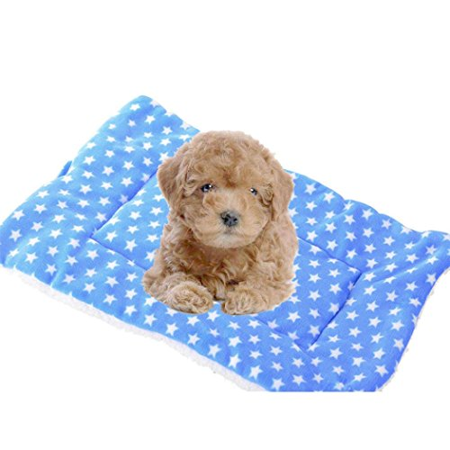 Aurorax Pet Mat Padded Pet Bed for Dogs & Cats,Homes for Pets Deluxe Pet Bed [Super Soft Cushion Kennel Cage Pad House Washable] Flannel Blanket (Blue, XL)