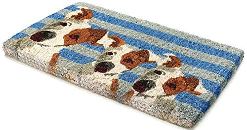Handwoven, Extra Thick Doormat |  Entryway Door mat For Patio, Front Door | Decorative All-Season | Furry Friends | 18