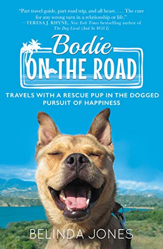 Bodie Road Travels Pursuit Happiness ebook