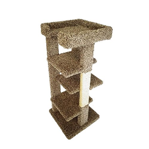 Four Level Cat House (46