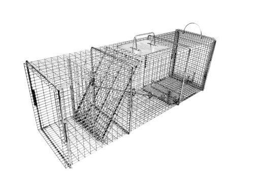 Tomahawk Professional Series Rigid Flush Mount Trap with Easy Release Door for Racoons/Groundhogs/Feral (Hog Trap Doors)