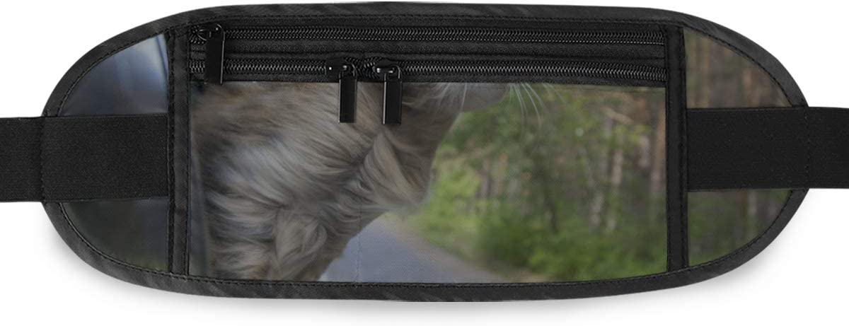 Head Cat Out Car Window Motion Running Lumbar Pack For Travel Outdoor Sports Walking Travel Waist Pack,travel Pocket With Adjustable Belt