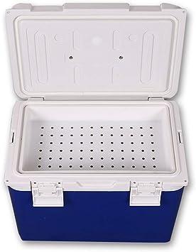 Estuche de viaje para refrigerador de insulina, caja de aislamiento 12L / congelador de vacunas/caja de transporte de sangre/incubadora de cadena de frío,12L: Amazon.es: Salud y cuidado personal