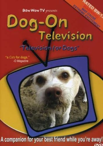 Dog-On Television: Television for Dogs