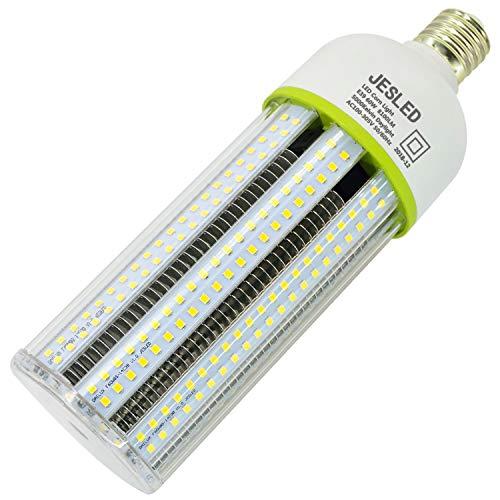 Light Bulb 220V And Led Torch