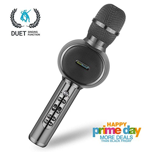 Best Wireless Vocal Mic (Karaoke Microphone Wireless, ZealSound Bluetooth Microphone with Dual Sing, Vocal Remove, Portable Handheld Mic Speaker Machine for iPhone/Android/Smartphones, Outdoor, Birthday, Home, Party (Gray))