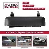 AUTEX 90695 Tailgate Handle Textured Black Lift