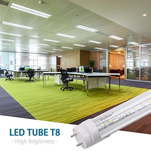 T8 LED Tube Light, Dual-End Powered 4ft LED Bulbs, 18W