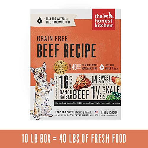 Honest Kitchen Human Grade Dehydrated Grain Free Beef Dog Food 10 lb - Love