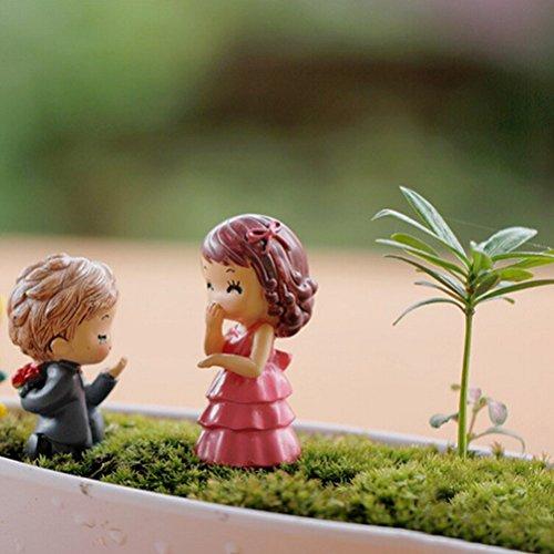 JiaUfmi 1 Pair Miniature Fairy Garden Cartoon Couple Lovers Ornament Dollhouse Plant Pot Figurine DIY Decor Home (Couple Miniature)