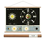 Cavallini Papers Phases of The Moon Vintage Style Decorative Poster & Hanger Kit, 20'' x 28''