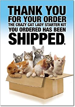 """8016Z 'Cat Lady Starter Kit' - Funny Birthday Greeting Card with 5"""" x 7"""" Envelope by NobleWorks"""