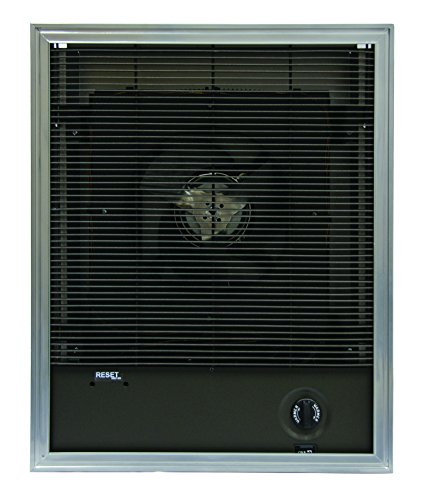 TPI F3424T Series 3420 Heavy-Duty Fan Forced Wall Heater, 19.2 Amps, 4000W
