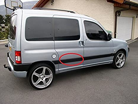 Panel de la puerta borde moldura correa/trasero derecho 2006-...: Amazon.es: Coche y moto