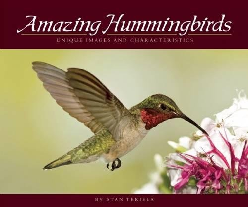 Download Amazing Hummingbirds: Unique Images and Characteristics (Wildlife Appreciation) PDF