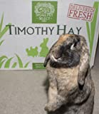 Small-Pet-Select-2nd-Cutting-Timothy-Hay-Pet-Food