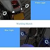 PerfecTech 12V33-LED Vintage Waterproof