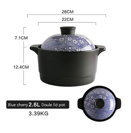 HongTeng Cazuela Japonesa Doble Tapa Tetera de cerámica de Alta ...