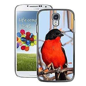 A-type Arte & diseño plástico duro Fundas Cover Cubre Hard Case Cover para Samsung Galaxy S4 (Red Blue Black Winter Nature Branch Tree)