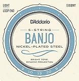 D\'Addario EJ60NY 5-String Banjo Strings, NY Steel, Light 9-20