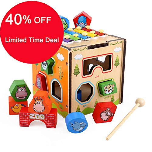 GEDIAO Wooden Learning Hammering & Pounding Toys Xylophone Educational Toys Set, Animal Shape Color Blocks Cube Toys for Age 1 2 3 Years Old and Up Kid Children Baby Toddler Boy Girl
