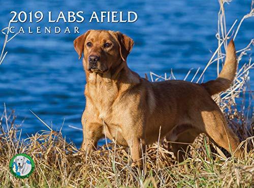 (2019 Labs Afield Calendar)