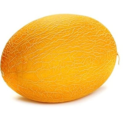 Melon seeds Sugar P-133 Heirloom Vegetable Seeds : Garden & Outdoor