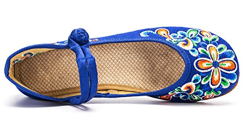 Avacostume Vrouwen Chinese Borduurwerk Casual Mary Jane Reizen Wandelschoenen Blauw