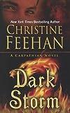 Dark Storm, Christine Feehan, 1410452182