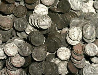 Buffalo Nickel Collection Starter Set
