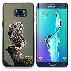 /Skull Market/ - Owl Baby Cute Feathers Blurry Nature For Samsung Galaxy S6 Edge Plus - Mano cubierta de la caja pintada de encargo de lujo -