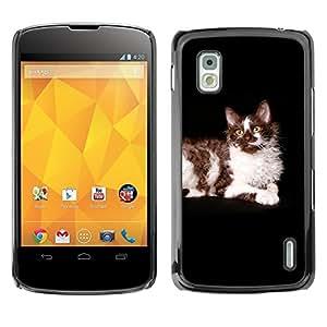 YiPhone /// Prima de resorte delgada de la cubierta del caso de Shell Armor - Ragdoll American Longhair Curl Cat Black - LG Google Nexus 4 E960