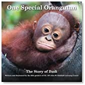 One Special Orangutan: The Story of Budi