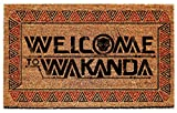Pyramid America Black Panther Welcome to Wakanda Marvel Comics Doormat inch