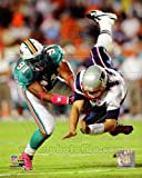 Cameron Wake Miami Dolphins NFL Action Photo 8x10