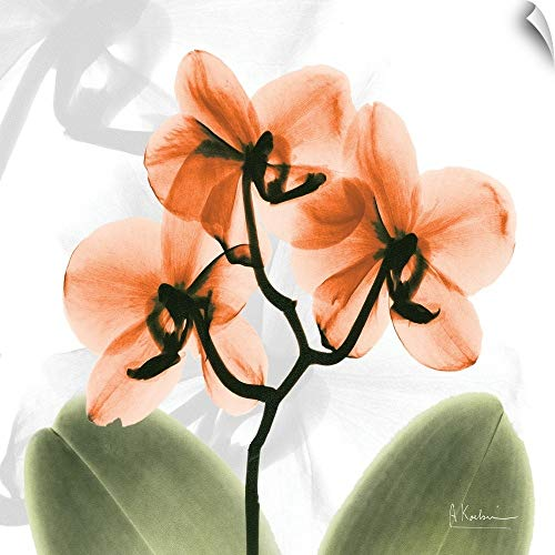 "CANVAS ON DEMAND Albert Koetsier Wall Peel Wall Art Print Entitled Orange Orchid x-ray Photography 12""x12"""