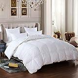 VERSARI Goose Down Feather Comforter Duvet Insert, 1000 Thread Count, Queen Size, Solid White,750 Fill Power,100% Cotton Fabric