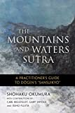 The Mountains and Waters Sutra: A Practitioner's