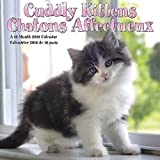 Cuddly Kittens/Chatons Affectueux 2018 Mini Calendar (English and French Edition)