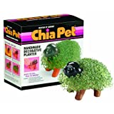 Chia Pet Puppy, Decorative Pottery Planter, Easy To Do and Fun To Grow, Novelty Gift, Perfect For Any Occasion