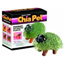 Chia Pet Handmade Decorative Planter, Puppy, 1 Kit