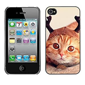 PC/Aluminum Funda Carcasa protectora para Apple Iphone 4 / 4S Selkirk American Shorthair Orange / JUSTGO PHONE PROTECTOR