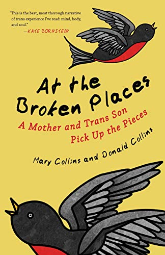 At the Broken Places: A Mother and Trans Son Pick Up the Pieces (Queer Action/Queer Ideas, a Unique Series Addressing Pivotal Issues Within the Lgbtq Movement) -