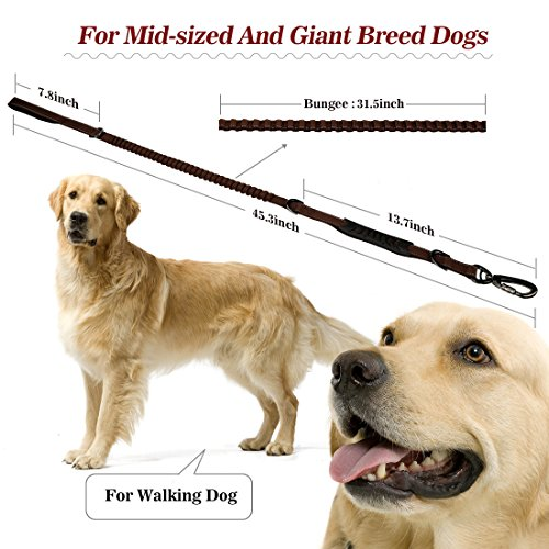 85%OFF SIAYI Reflective Bungee Dog Leash Specially for Medium and Large Dogs Obedience Training Running and Walking with Dual Two 2 Handles Durable Sturdy Construction